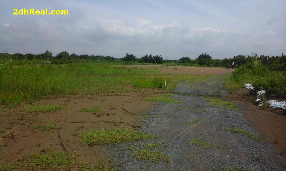 Bán dự án 87,9 hecta, thuộc nông trường Tam Tân, ấp Tam Tân, xã Tân An Hội, huyện Củ Chi, Tp.HCM
