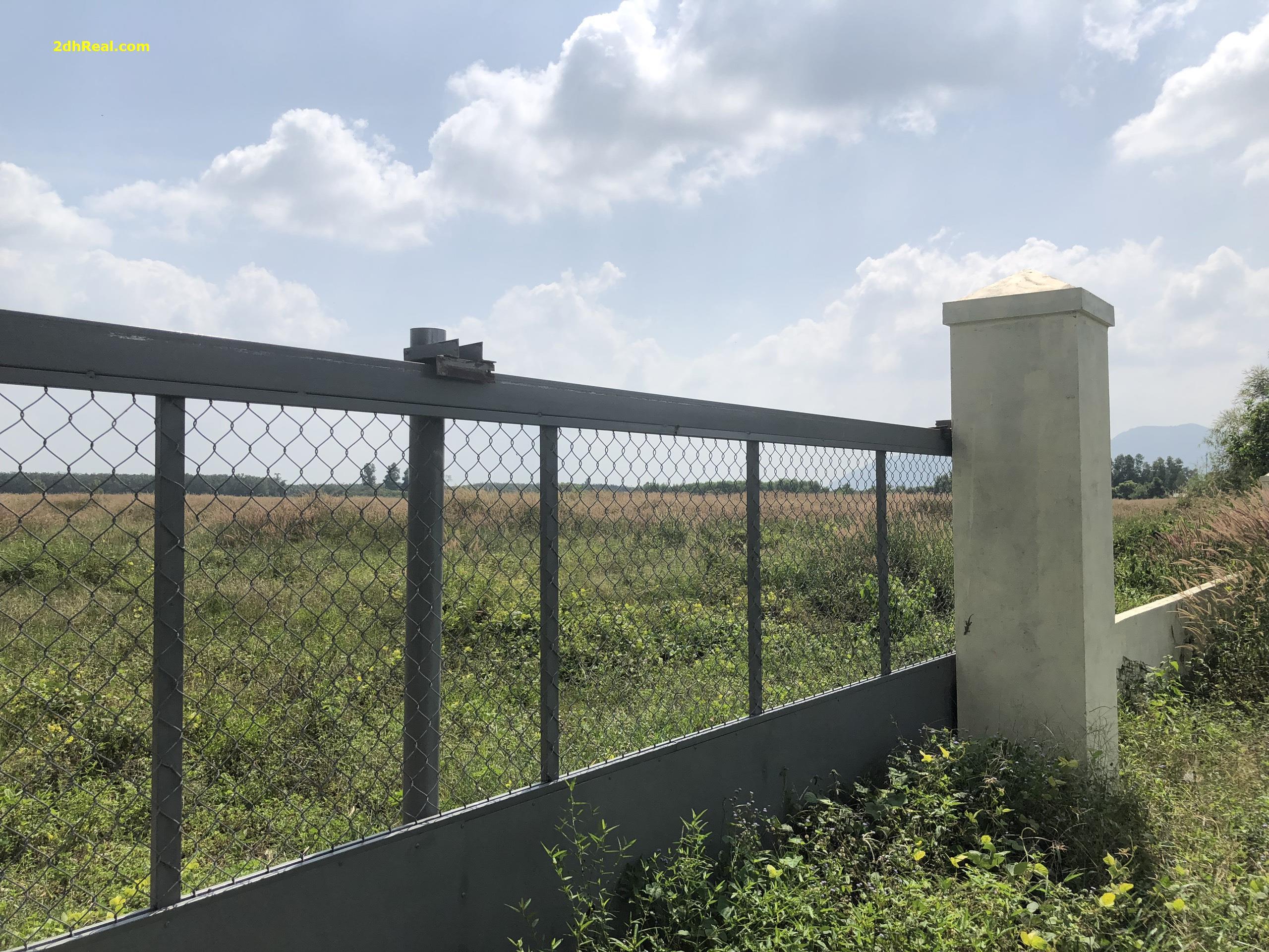 Chuyển nhượng 42ha khu công nghiệp huyện Tân Thành tỉnh Bà Rịa - Vũng Tầu