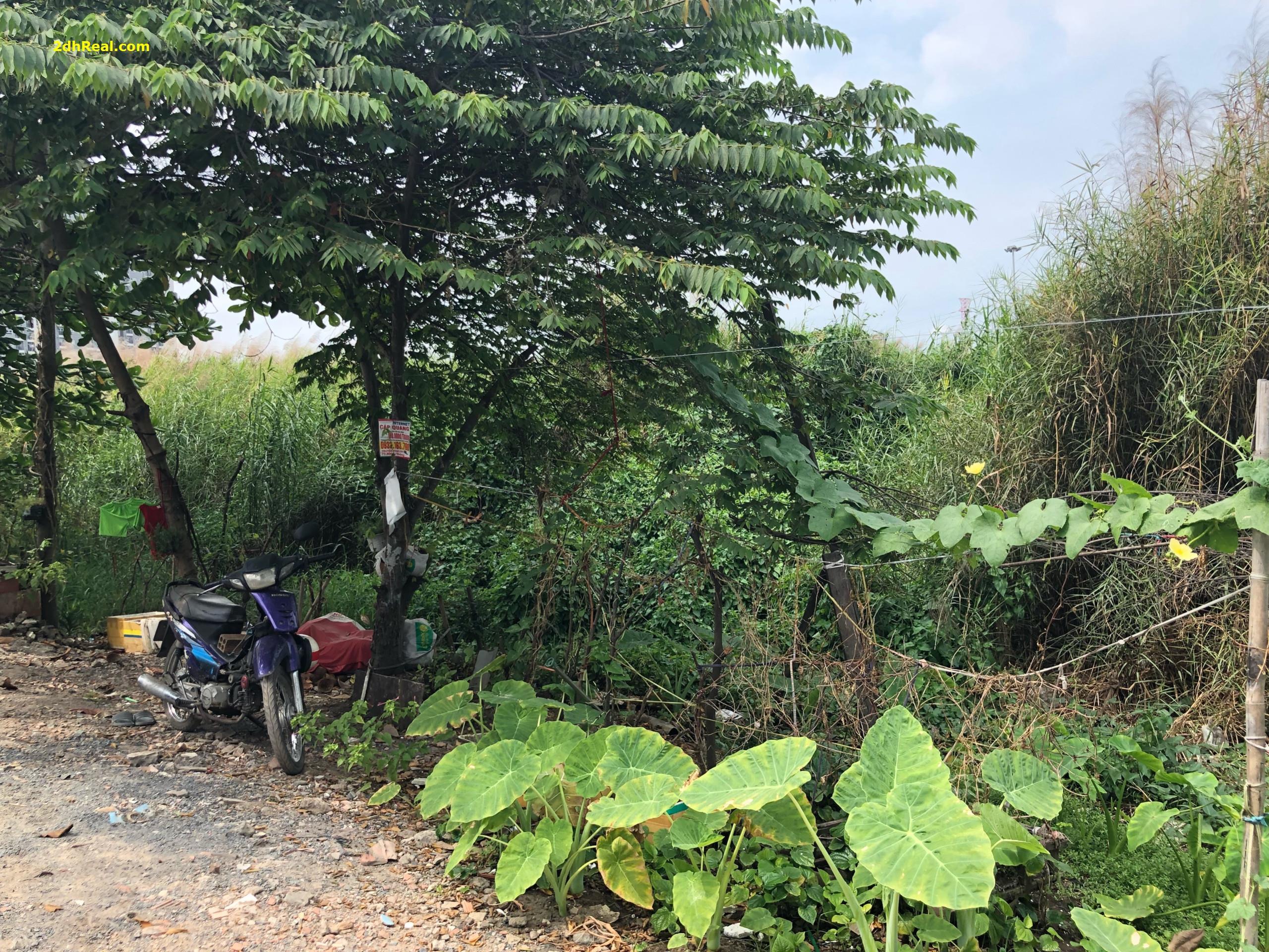 Bán dự án chung cư quận Bình Tân diện tích 45.785m2