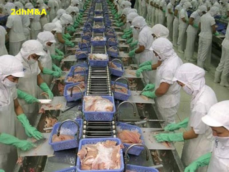 10 công ty chế biến xuất khẩu thủy sản lớn nhất Việt Nam